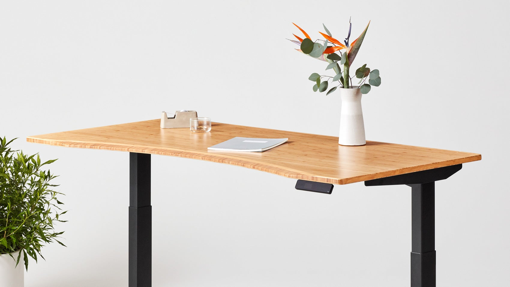 Jarvis Bamboo Contour standing desk