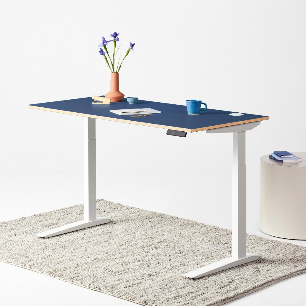 Fully Jarvis Designer Ply Standing Desk in classic blue on a white frame