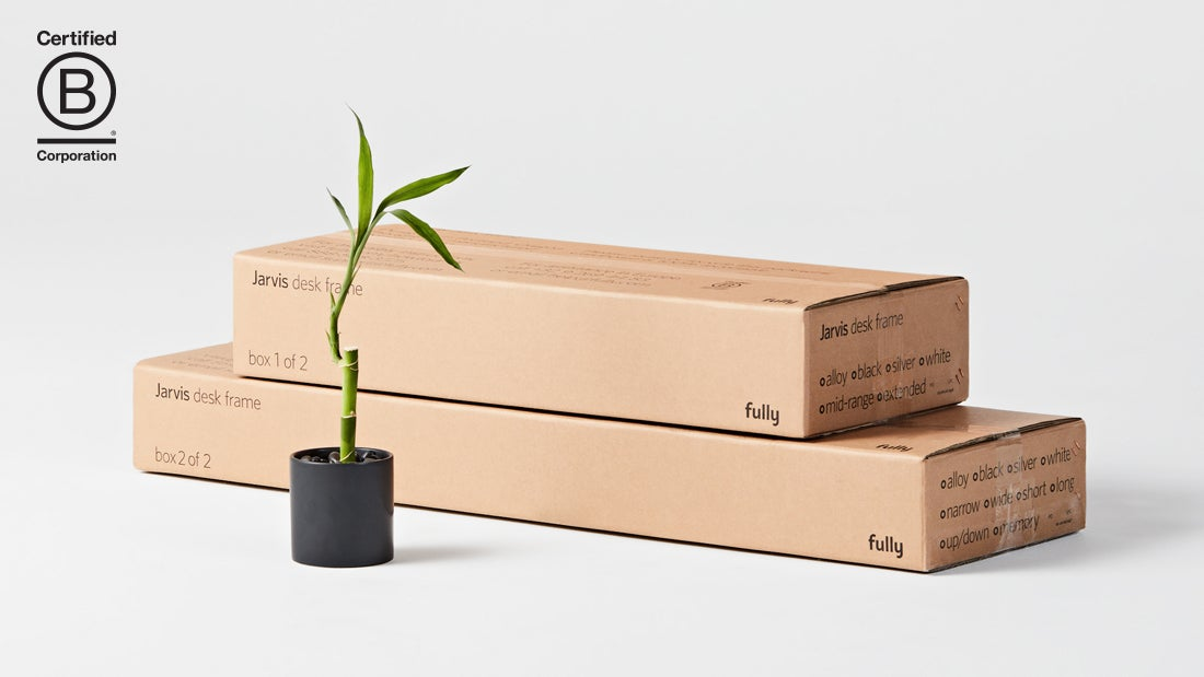 Two boxes of the Jarvis standing desk with no epe next to a bamboo plant