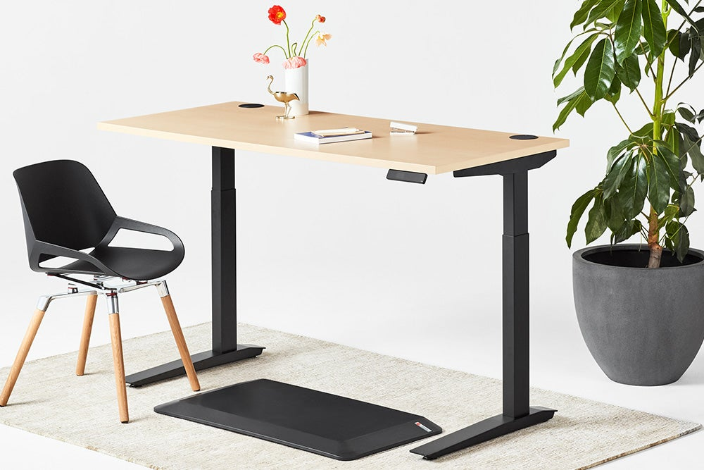 jarvis laminate standing desk black frame numo and muvmat